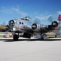 B-17 Flying Fortress, Yankee Lady by Bruce Beck