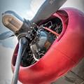 B-24j Liberator Engine by Kristia Adams