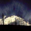 Sun Fire by Brian Gustafson