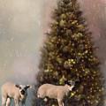 Baa Humbug - Seasonal Art by Jordan Blackstone