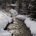 Babbling Brook, Early Spring, Lake Louise, Alberta by Barry Lycka