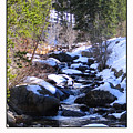 Babbling Winter Brook by David Dunham
