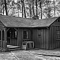 Babcock State Park Cabin - Paint Bw by Steve Harrington