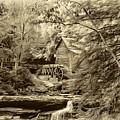 Babcock State Park Wv - Sepia by Steve Harrington