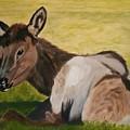 Baby Elk by Robert Tower
