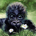 Baby Gorilla With Daisies by Jeanette Fowler