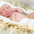 Baby Jesus by Jennifer Hickey