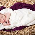 Baby Jesus Nativity by Cindy Singleton