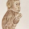 Baby Monkey  by Natalia Wallwork