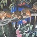 Baby Possums by Serena Valerie Dolinska