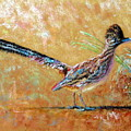 Baby Roadrunner by Shirley Leswick