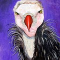 Baby Vulture by Leah Saulnier The Painting Maniac