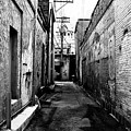 Back Alley by David Lee Thompson