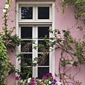Back Alley Window Box - D001793 by Daniel Dempster