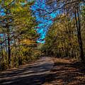 Back Road 5 by Thomas Warner