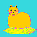 Background Colour Choice Saffron Cat by Barbara Moignard