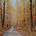 Backroads by Jake Vandenbrink