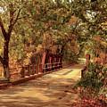 Backroads River Bridge by Robert Frederick