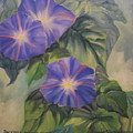 Backyard Morning Glories by Lorraine Wilcox