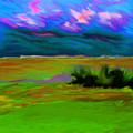 Backyard Sky by Everett White