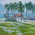 Bahama Beach  by Howard Stroman