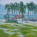 Bahama Beach  by Howard Stroman