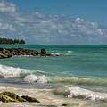 Bahamas Beach by Zina Stromberg