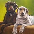 Bailey And Hershey by Oksana Zotkina