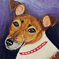 Bailey Terrier Mix by Ania M Milo