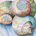 Balance In Spirals Watercolor Painting by Michelle Wiarda-Constantine