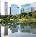 Balance In Tokyo by Carol Groenen