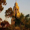 Balboa Park Bell Tower by Phyllis Spoor