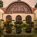 Balboa Park Botanical Building Symmetry by Patti Deters