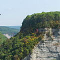 Bald Eagle At Letchworth State Park by Michael Ver Sprill
