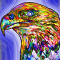 Bald Eagle Face by Jeelan Clark