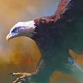 Bald Eagle Landing by Barbara Hymer