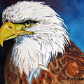 Bald Eagle by Maria Barry