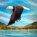 Bald Eagle Shuswap Rhapsody by Joey Nash