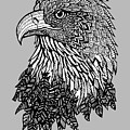 Bald Eagle Zentangle by Kylee S