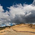 Bald Hills In Summer 2 by Greg Nyquist