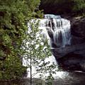 Bald River Falls by Pat Turner