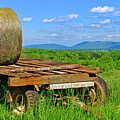 Bales At Rest by The American Shutterbug Society