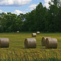 Bales In The Field by Maria Keady