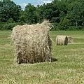Bales Of Hay In New England Field by Erin Paul Donovan