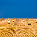 Bales On The Storm by Todd Klassy