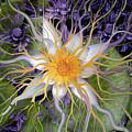 Bali Dream Flower by Christopher Beikmann