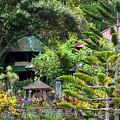 Bali Gardens by Todd Hummel