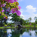 Bali Reflections by Todd Hummel