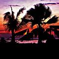 Bali Sunset by Steve Harrington