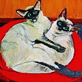 Balinese Cats Hugging by Karen McNamara